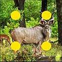 100 pics Animals answers Kudu
