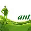 100 pics Food Logos answers Green Giant