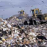 100 pics L Is For answers Landfill