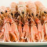 100 pics L Is For answers Langoustines