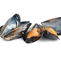 100 pics Taste Test answers Mussels