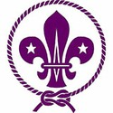 100 pics Retro Logos answers Cub Scouts