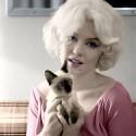 cat-lovers-081
