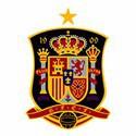 100 pics answers Football Logos